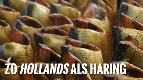hollands-als-haring